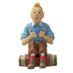 PVC Tintin zit