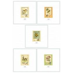 Kuifje lithographie 5 stuks nr .569/1000