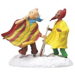 Tintin & Zorrino
